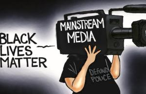 Truth About BLM Democrats and the Media Want to Hide, Summed Up by One Cartoon