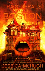 train derails in boston SJW genre cover