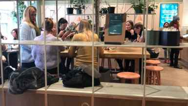 Vegan places to eat Stockholm