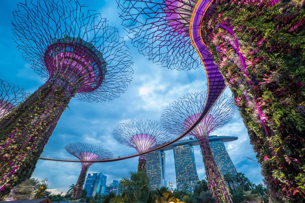 gardens by the bay, singapore, super grove