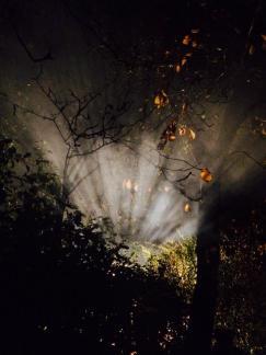 Samhain ritual fire