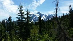 Mount Baker in Washington
