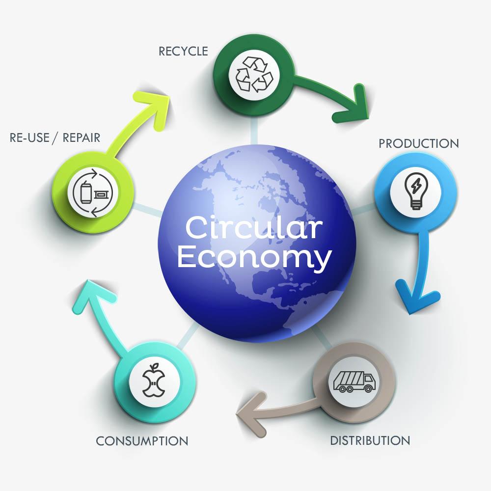 Circular Economy - Raw Straw