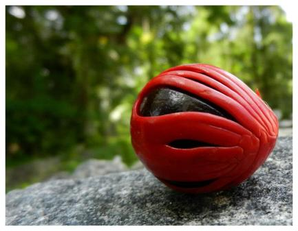 The red covering makes for mace, while the hard nut inside is the nutmeg. PHOTO: Abrachan Pudussery