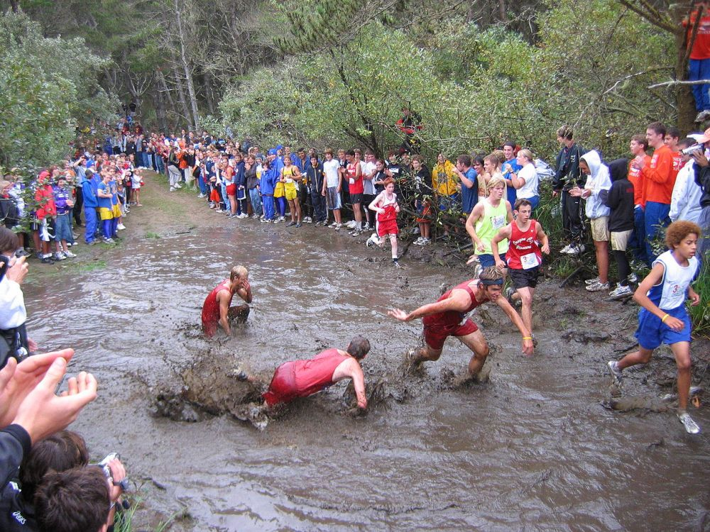 Lets Go Country! Top Online Articles on Cross Country Running (2/2)