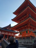 Bright orange-red pagodas are practically Japanese icons!