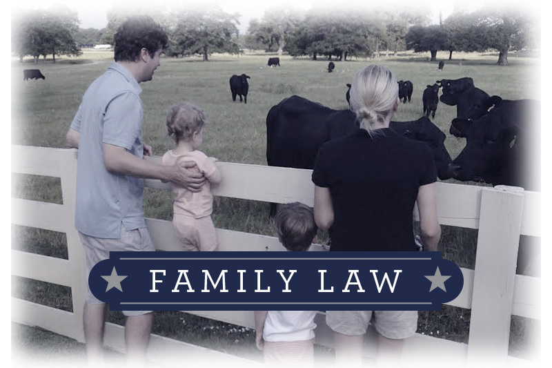 Family Law, Divorce, Adoption, and Child Custody, Law offices in Canton and Dallas TX