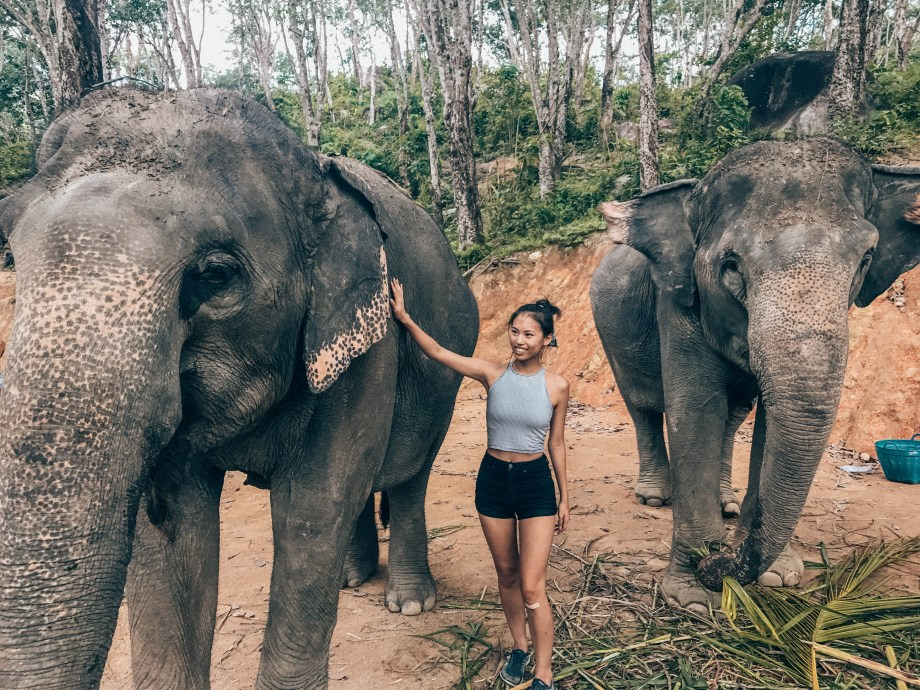 Thailand Guide & Vlog: Elephant Jungle Sanctuary