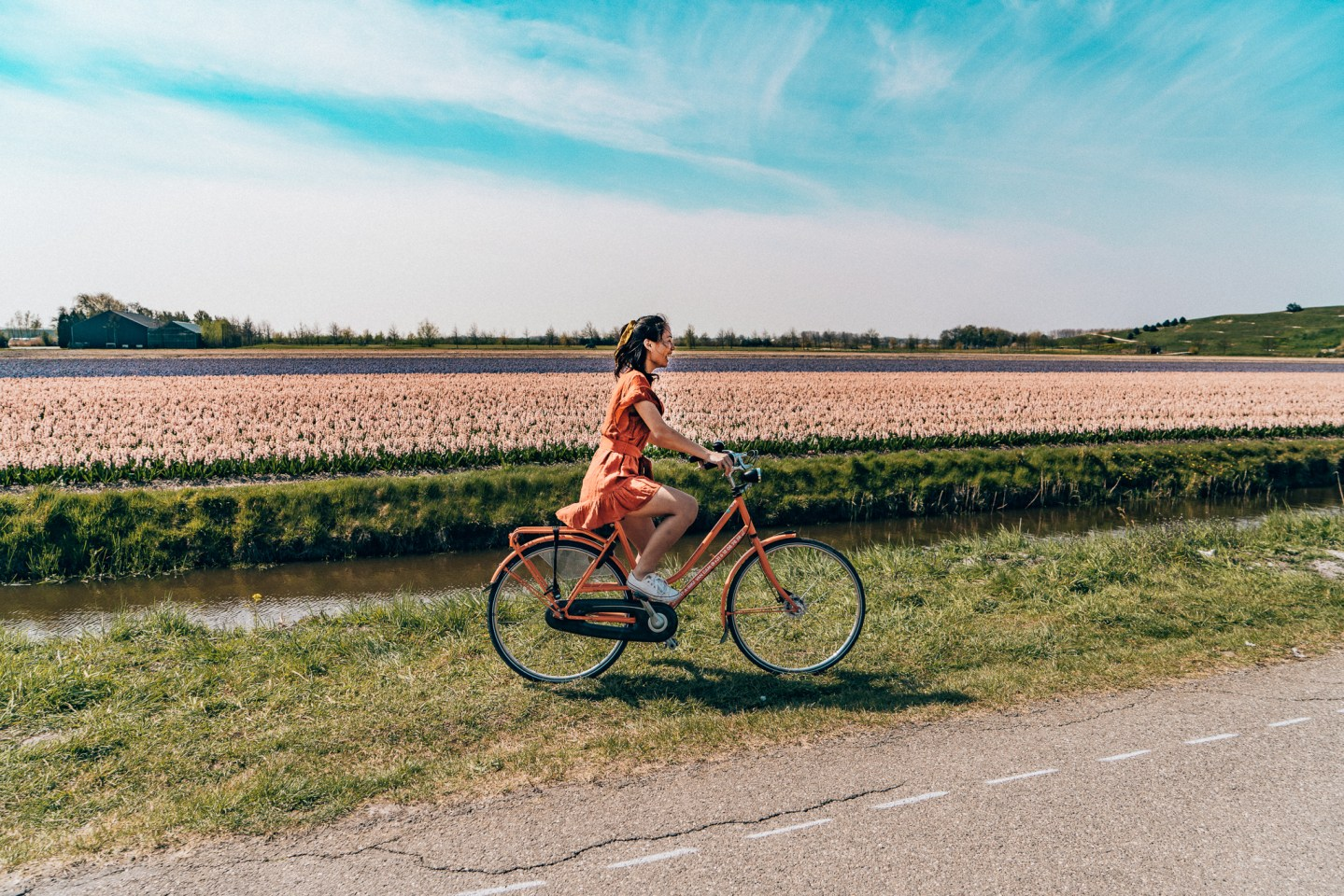 Three Things to Know When Planning a Trip to the Tulip Festival, Netherlands