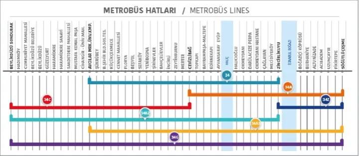 Metrobus Lines