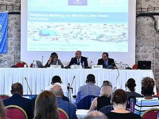 mediterranean countries met in izmir