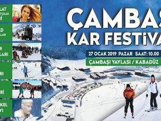 14 of the snow festival snow festival