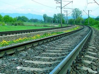 a new rail coming between slap and turhal
