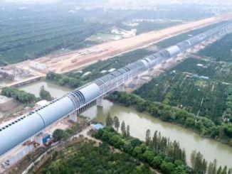 ট্রেন নয়েজ থেকে পাখি রক্ষা করার জন্য চীন একটি সাউন্ড ব্যারিয়ার তৈরি করেছে