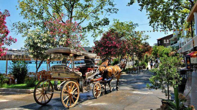 ibb agustosta islands transportation will organize