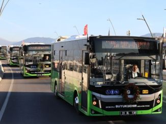 new lines and numbers of municipal buses