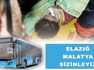 Os autobuses públicos privados de Istambul funcionarán para os superviventes do terremoto