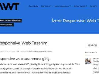 IzmirWeb Design