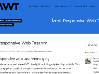 Thiết kế web của Izmir