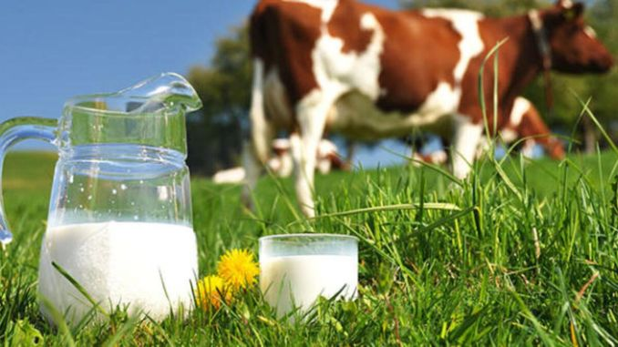 Number of Cow Milk Collected in March Increased Percent