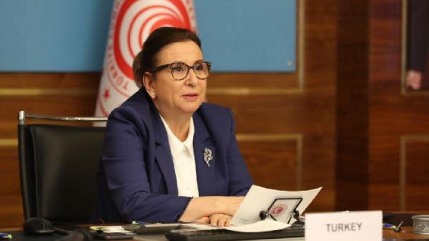 Minister Pekcan erklärte Innovationen bei der Unterstützung der Türkei