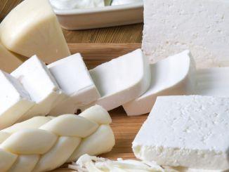 تصدير حليب البقر ومنتجات الألبان جعلها مفتوحة