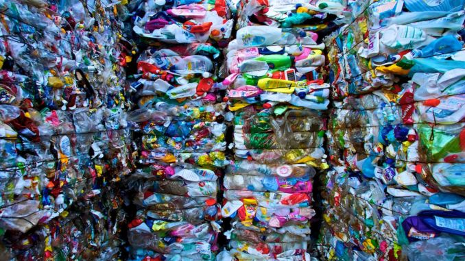 recycled recycled a thousand tons of plastic waste a month