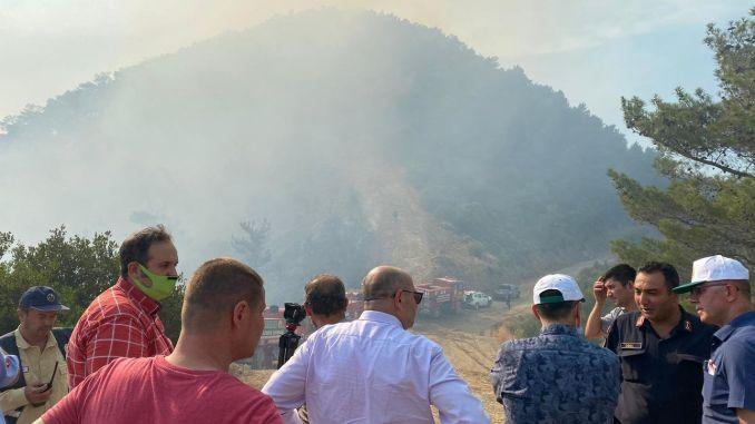 De bosbrand in Balcova is gedeeltelijk onder controle