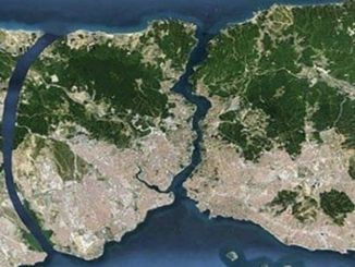 forest qualification of forests on canal istanbul route
