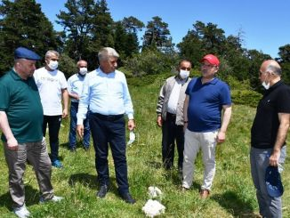governor gurel and deputy examined unal keltepe ski resort