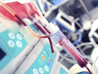 เลือดของตัวเองรักษาโรคภูมิแพ้ได้หรือไม่?