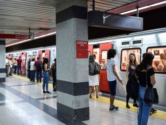 Is Public Transport Free in Ankara on October 29?