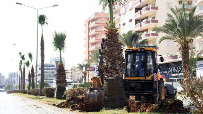 Drveće se ne zaboravlja u projektu razmjene foruma