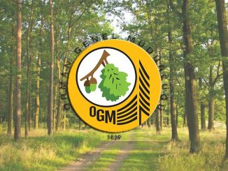 General Directorate of Forestry to Recruit 274 Permanent Workers