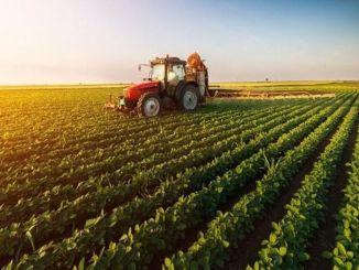 Meghatározták a mezőgazdasági termelőknek nyújtandó mezőgazdasági támogatás összegét