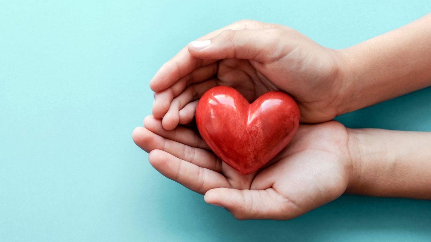 coronavirus-process-negatively-affected-organ-donations