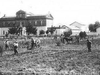 rolnictwo osmańskie