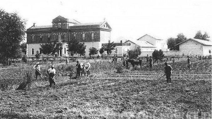 ottoman agriculture