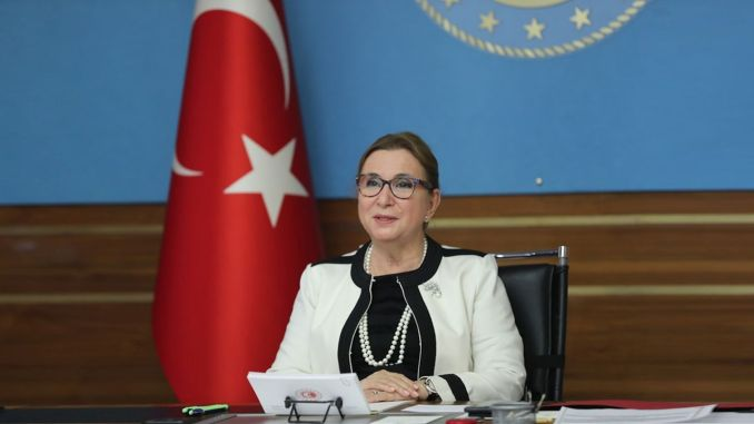 The last meeting of the year's committee was held under the chairmanship of minister pekcan