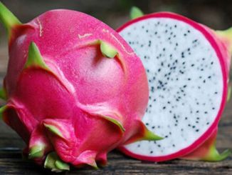 you will be amazed by the benefits of this colorful fruit
