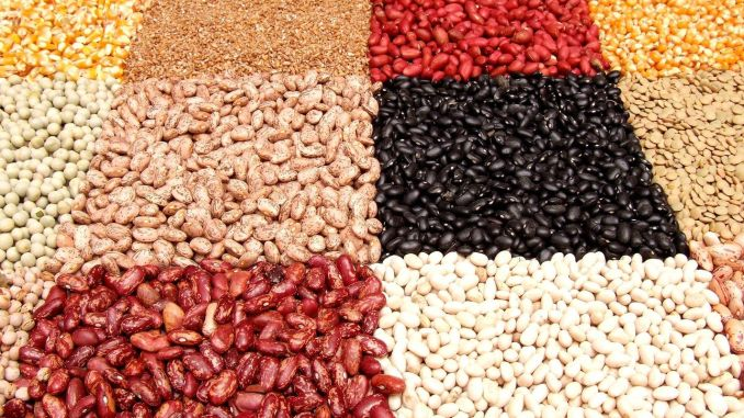 Legumes, the golden key to sustainable nutrition