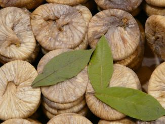 dried fig exports exceeded a thousand tons