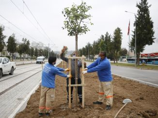 Antalya Stage Rail System Route Is Agaced