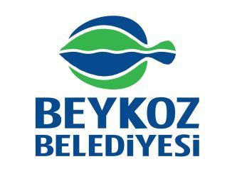 بلدية اسطنبول بيكوز