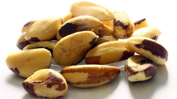 caution when consuming selenium source brazil nut