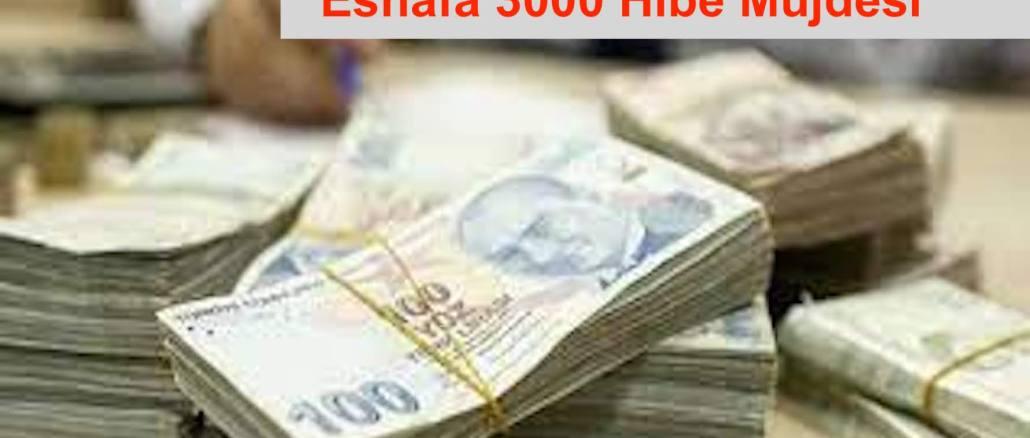 3000 TL贈款支持商人