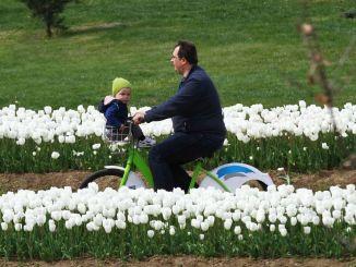 Distriktet kombineres med cykelstier i Kocaeli