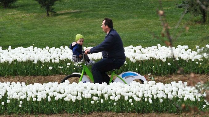 The district will be combined with bicycle paths in Kocaeli