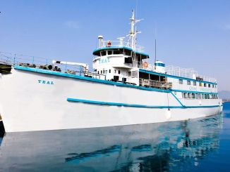 أصبحت سفينة Teal التابعة لجامعة Kyrenia متحفًا للتاريخ البحري