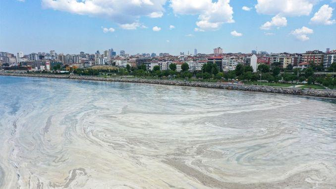 イスタンブール運河がマルマラの海の唾液にどのように影響するか